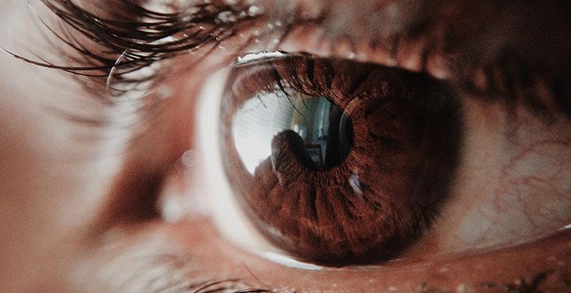 Observeren, het nieuwe waarnemen